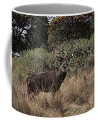 Mountain Nyala Coffee Mug