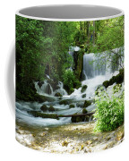 Mountain River Spring Coffee Mug