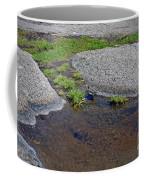 Mountain Sanderling Coffee Mug