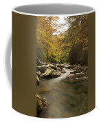 Mountain Stream 2 Coffee Mug