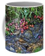 Mountain Stream In Oak Glen Coffee Mug