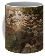 Mountain Stream With Boulders Coffee Mug