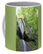Mountain Waterfall Spring Nature Scene Coffee Mug