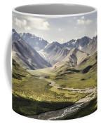 Mountains In Denali National Park Coffee Mug
