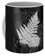 Mounts Botanical Garden 2365 Coffee Mug
