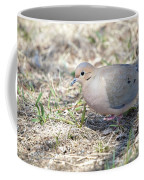 Mourning Dove 2 Coffee Mug