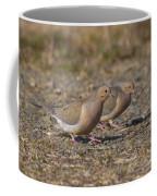 Mourning Dove Pair Coffee Mug
