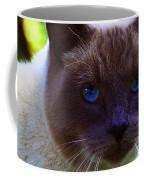 Mr. Blue Eyes Coffee Mug