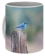 Mr. Bluebird Coffee Mug