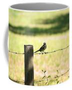 Mr. Mockingbird Coffee Mug