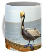 Mr. Pelican Coffee Mug