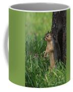 Mr. Squirrel Coffee Mug
