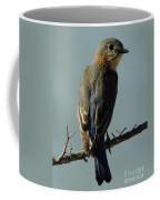 Mrs. Bluebird Coffee Mug