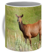 Ms. Elk Coffee Mug