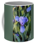 Msu Spring 10 Coffee Mug