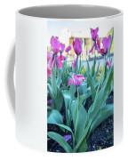 Msu Spring 33 Coffee Mug