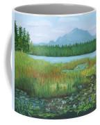 Mt Ampersand From Oseetah Lake Coffee Mug