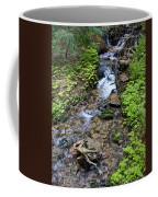 Mt. Spokane Creek 2 Coffee Mug