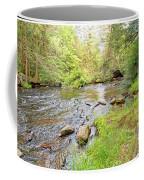 Mud Run, Pennsylvania, Pocono Mountain Stream Coffee Mug
