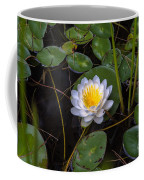 Mudd Pond Water Lily Coffee Mug