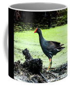 Muddy Marsh Coffee Mug