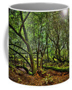 Muir Woods Rejuvenation Coffee Mug