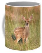 Mule Deer Fawn Is All Ears Coffee Mug