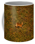 Mule Deer - Mattole Beach Coffee Mug