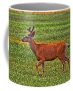 Mule Deer On The Sante Fe Trail Coffee Mug