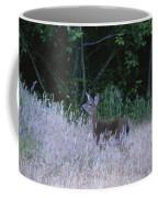 Mule Deer - Sinkyone Wilderness Coffee Mug