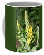 Mullein Wildflower Coffee Mug