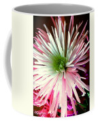 Multi Color Aster Coffee Mug