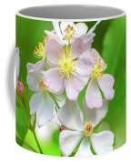 Multiflora Rose Coffee Mug