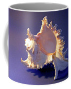 Murex Ramosus Seashell Coffee Mug
