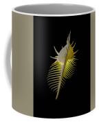 Murex Shell Coffee Mug