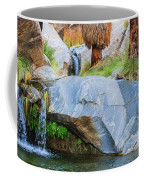 Murray Canyon Falls Coffee Mug