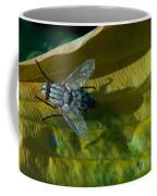 Musca On Display Coffee Mug