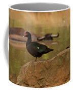 Muscovy Duck Coffee Mug