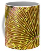 Mushroom Coral Coffee Mug