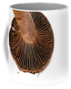 Mushroom Gills Coffee Mug