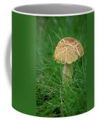 Mushroom In The Grass Coffee Mug