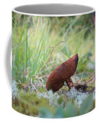 Mushroom Coffee Mug