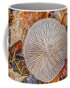 Mushroom On Fall Floor Coffee Mug