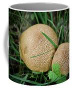 Mushroom Pair Coffee Mug