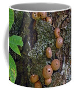 Mushroom Tree Trunk Coffee Mug
