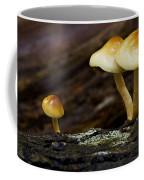 Mushroom Trio Coffee Mug