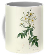 Musk Rose Coffee Mug