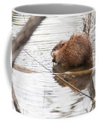 Muskrat Spring Meal Coffee Mug