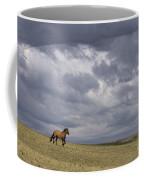 Mustang And Stormy Sky Coffee Mug