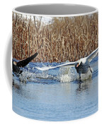 Mute Swan Chasing Canada Goose I Coffee Mug